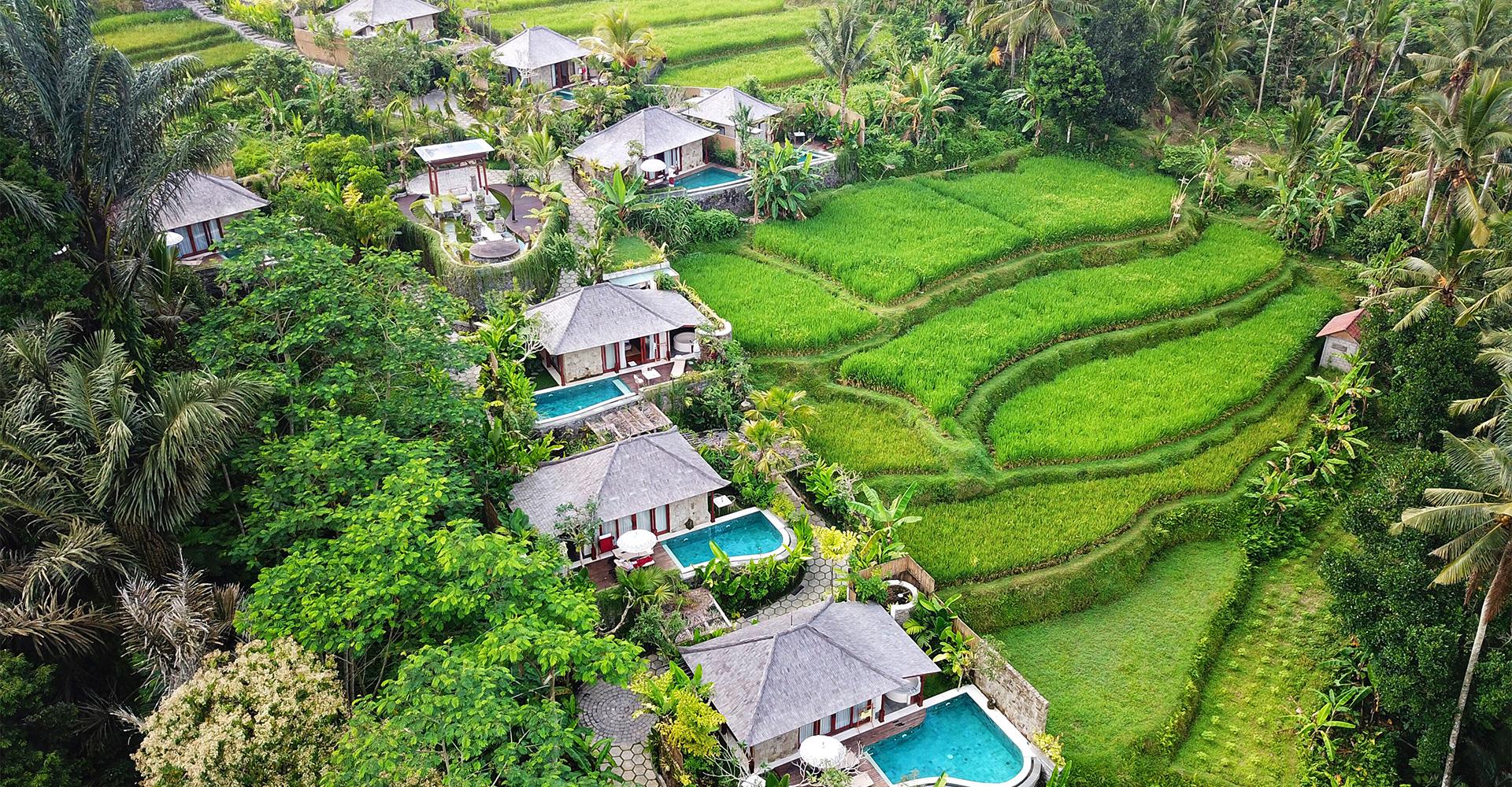nau-villa